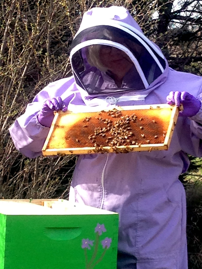 Mom checks on one of her hives.